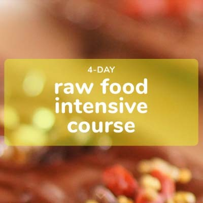 4-Day Raw Food Intensive Course | 6-9 April 2020