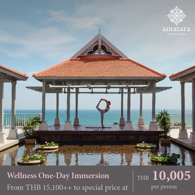 Wellness One-Day Immersion