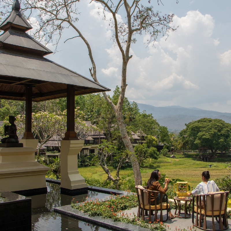 Afternoon Tea for Two at Four Seasons Resort Chiang Mai