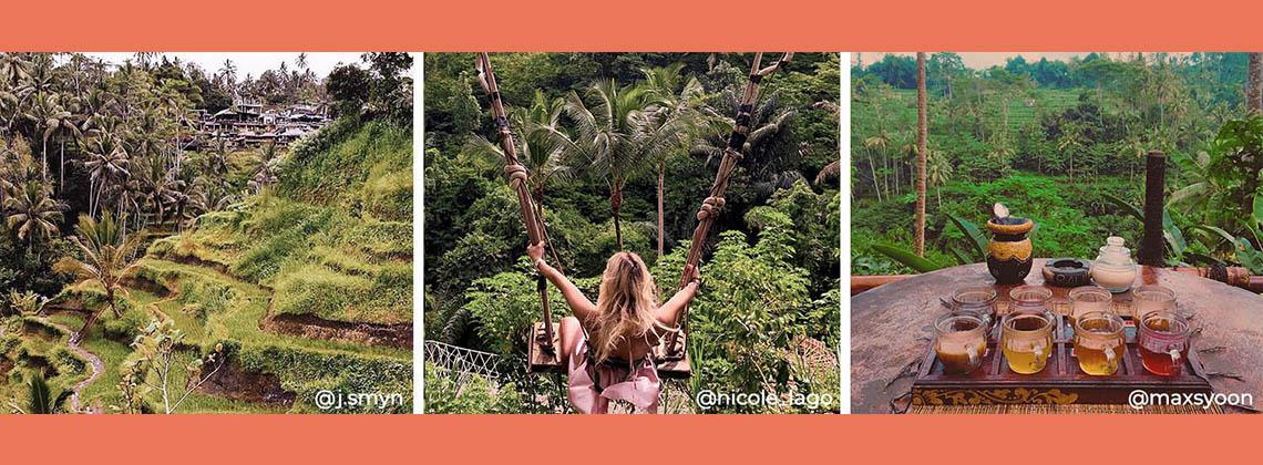 Swing Through Ubud Tour